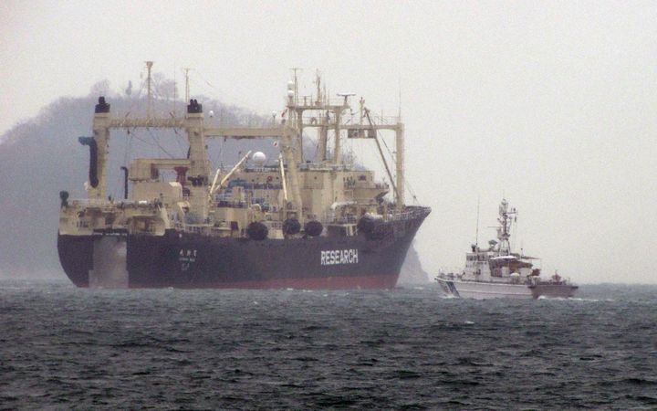 Japan's large Nisshin Maru whaling 'research' mother ship.
