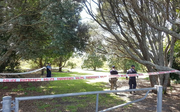 The area at the park on Mona Ave in Mangere Bridge where a baby's body was found.