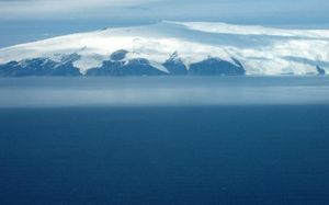 The waters around Antarctica are home to some 16,000 known species.