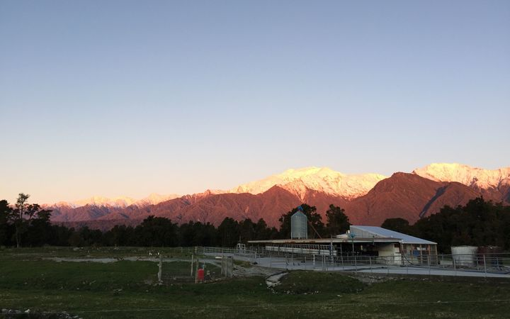Chris Staples' dairy farm near the Franz Joseph Glacier.
