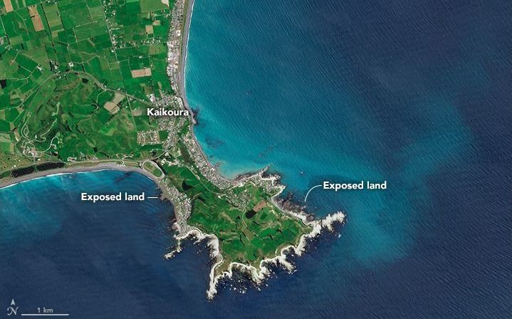 This image taken on 25 November shows the newly exposed land near Kaikōura.