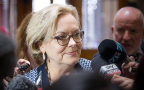 Judith Collins annouces plan to run for National Party leader