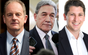 Left to right: David Shearer, Winston Peters, Michael Wood