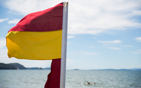 Surf lifesaving flags out at the beach.
