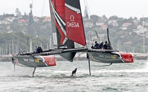 Team New Zealand on the Waitamata Harbour.