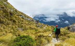 The Routeburn Track.