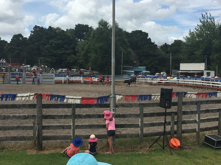 The rodeo at Warkworth.