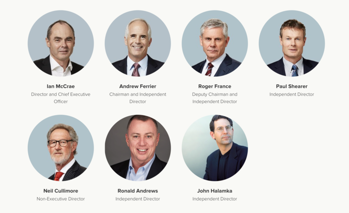 An example of an all-male board, Orion Health Group.