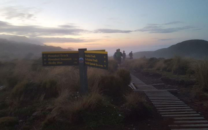The Pouakai Saddle at dusk.