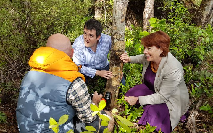 Goodnature founder Robbie van Dam, left, MP Chris Bishop and Maggie Barry check out a trap in the sanctuary.