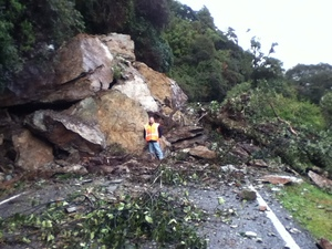 Boulders on SH6 near Haast on the West Coast.