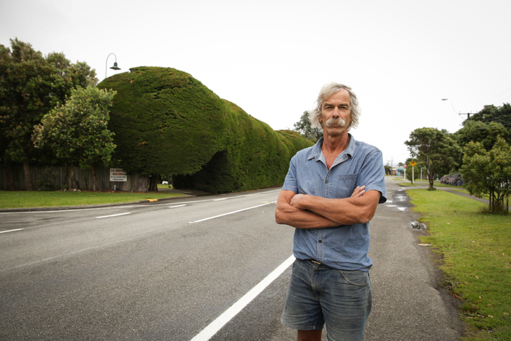 The hedge on Te Moana Road was planted by Vincent Osborne's grandfather in the 1930s, and has been in his family for four generations, neighbors and Kāpiti Coast District Council are concerned it is a traffic hazard. Pictured: Vince Osbourne.