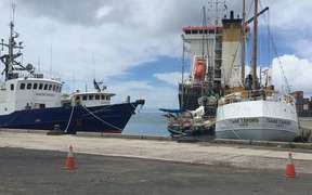 In Avatiu harbor, Rarotonga - to the left Lady Moana and Maungaroa II. Taio Shipping services reduced to just two vessels following the grounding last week of its star vessel Moana Nui.