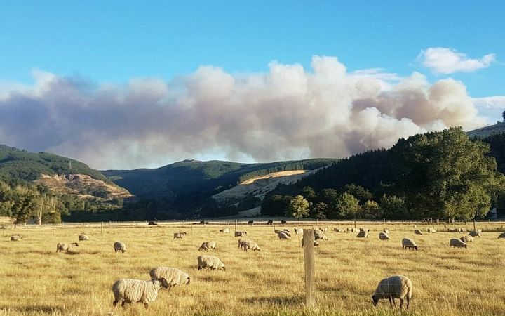 The fire on the Port hills overlooking Christchurch was pushed uphill by strong winds.