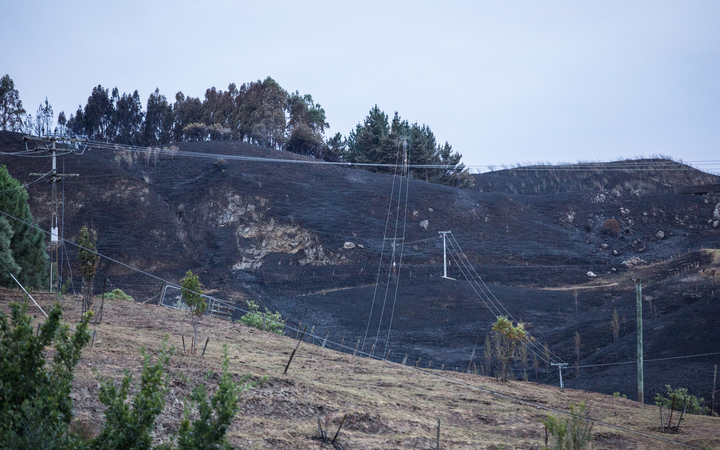 Burnt hills and power lines in Hawkes Bay.