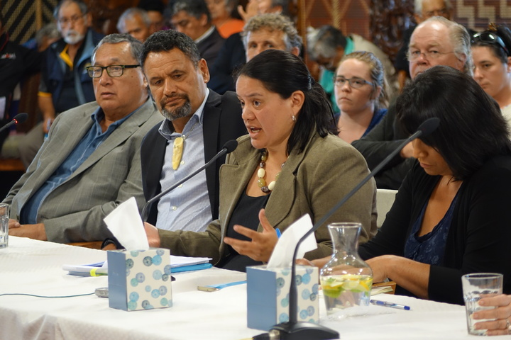 The chairwoman of Te Kotahitanga o Te Ātiawa, Liana Poutu (centre) said the Parihaka example showed a way forward outside of legislation and the Treaty process.