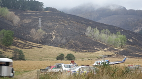 A fire blackened area in the Port Hills, Christchurch.