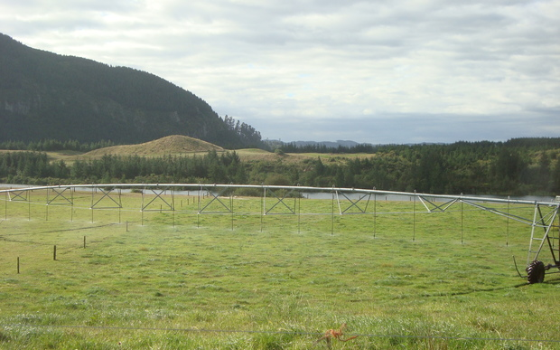 One of the Crafar farms that was up for sale in 2010.