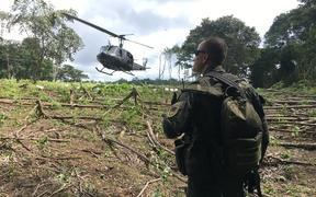 Policia watch over the destruction of a coca field in Colombia.