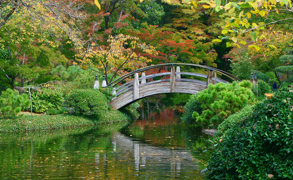 Moon bridge, Japanese garden
