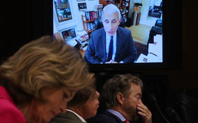 Senators listen to Dr. Anthony Fauci, director of the National Institute of Allergy and Infectious Diseases speak remotely during a Senate Health, Education, Labor and Pensions Committee hearing on Capitol Hill on 12 May 2020 in Washington, DC.