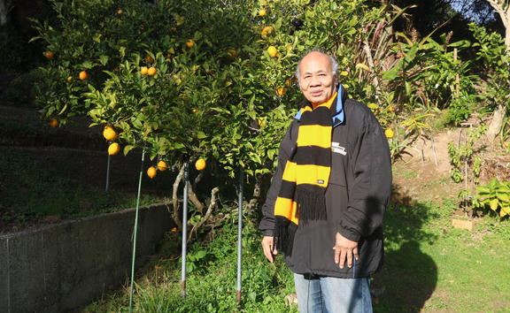 Muagututi'a Aliota HarryTauafiafi enjoying his lemon tree at home in Newlands