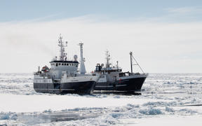 For the toothfish season Dec 2019