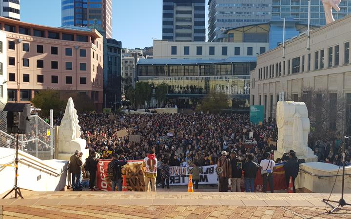 The crowd for the Black Lives Matter protest in Wellington.