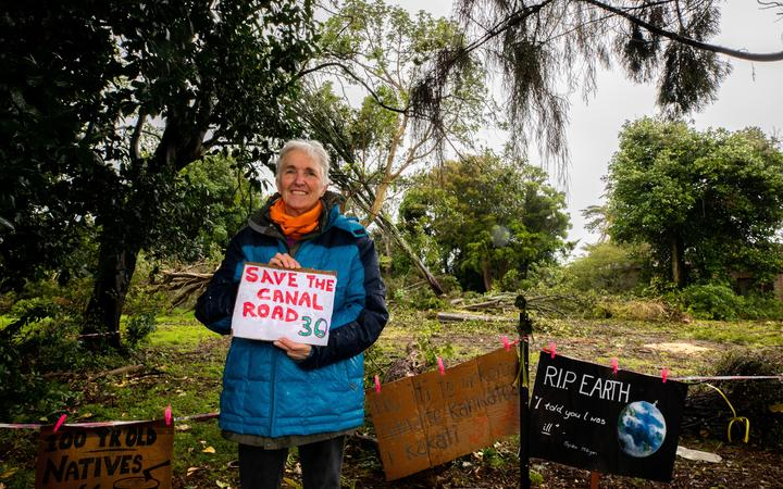 Janet Chaman protesting against the felling of native trees at Avondale.