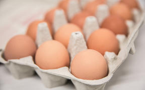 Generic eggs in cartons