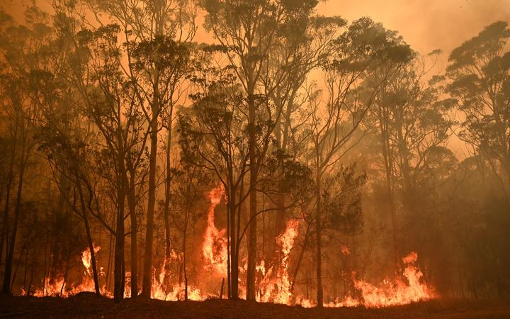 A bushfire burns in the town of Moruya, south of Batemans Bay, in New South Wales on January 4, 2020.