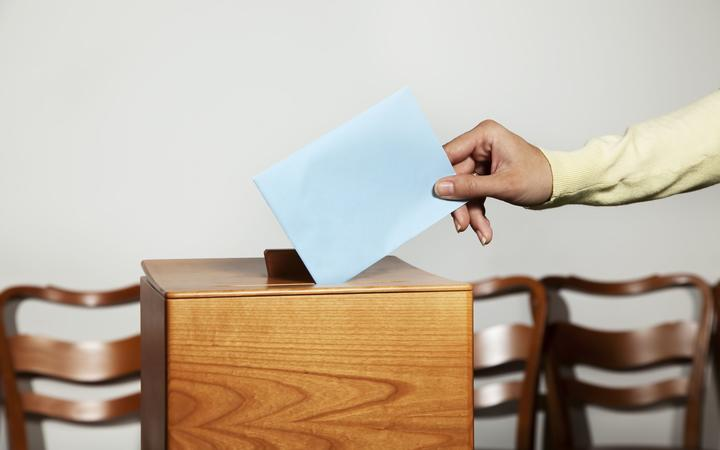 Group wanting lower voting age takes fight to Court of Appeal