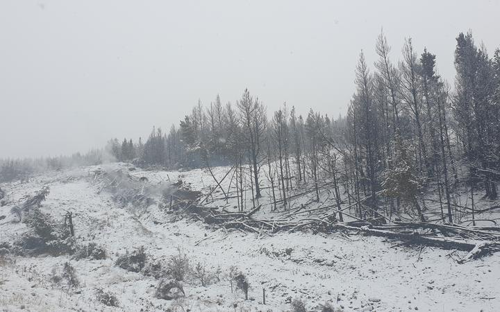 Snow in the Mackenzie country after the large fire near Twizel.