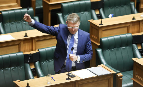 National MP Paul Goldsmith speaks during the final general debate for the 52nd Parliament