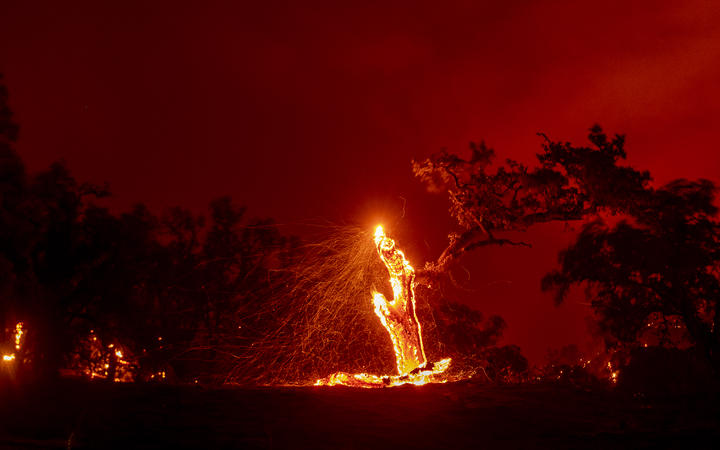 In this long exposure photograph, embers fly off a burning tree during the Hennessey fire in the Spanish Flat area of Napa, California on 18 August, 2020.