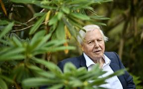 GOTHENBURG 2018-09-06