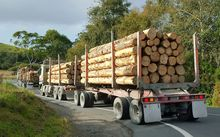 log truck in northland