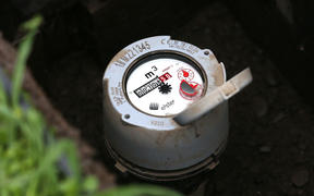A water meter in Seddon - the first town in Marlborough to have meters rolled out in 2000.