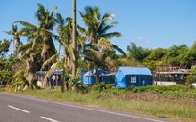Blue tents dot the post-Cyclone Winston landscape of Fiji.