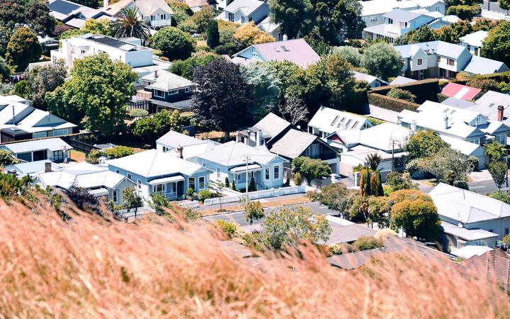 Houses as seen from Mount Eden summit in Auckland, New Zealand.
