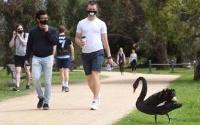 People walk past a swan around Melbourne's Albert Park Lake, 12 October 2020.