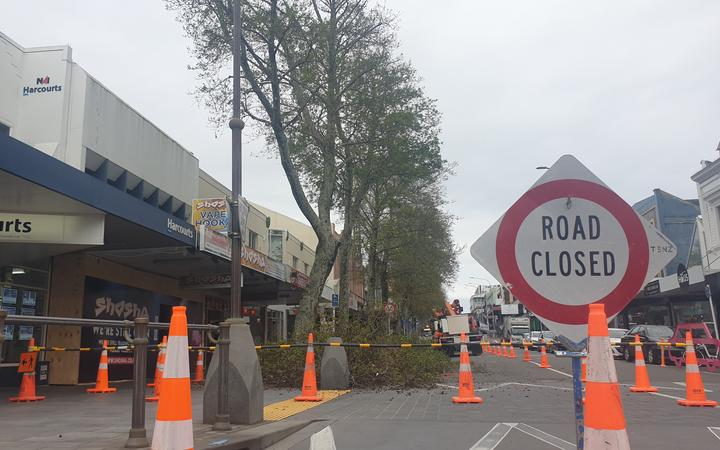 Crews trim trees along Devon Street.