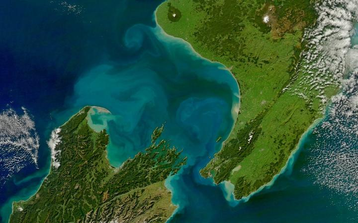 Eddies of water from rivers in Golden and Tasman Bay reach more than 100 kilometres out into greater Cook Strait.