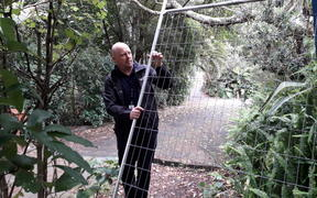 A park ranger holds a damaged fence at Kauri Glen.