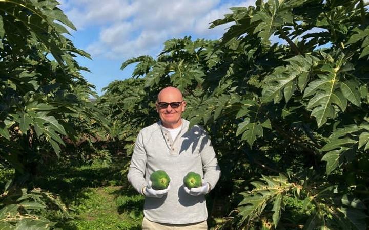 Raymond Young selecting papaya.