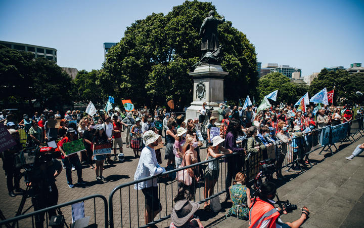 People gathered outside parliament for the School Strike 4 Climate on 26 January, 2021.