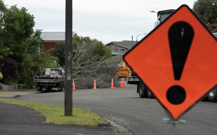 A tree covers a street in the New Plymouth suburb of Merrilands after strong winds today.