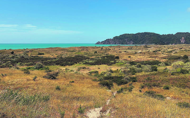 Iwi are fighting to stop a resource consent to turn this land in Whakatane, which is wahi tapu, into a suburb featuring a retirement village.