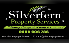Silverfern Property Services is in liquidation after claiming $14 million in wage subsidies in 2020.
