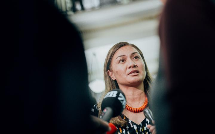 'Massive strides' in addressing domestic violence venture shortcomings - Marama Davidson